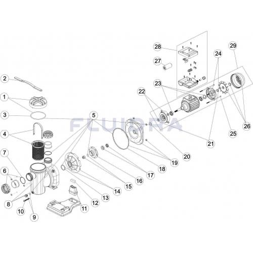 Repuesto Sena Brida Motor C 71