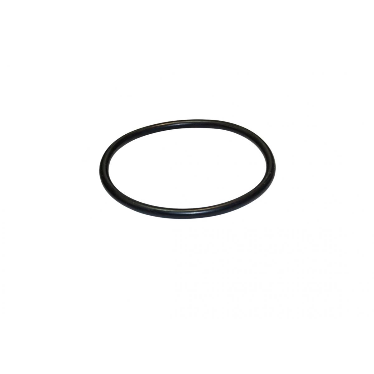 Pre- Filter O´Ring  Saci Pump Optima